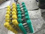 لون [هإكس] مطّاطة دمبل [جم] تمرين عمليّ مطاط دمبل