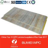 el panel de pared de 600*10m m WPC