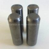 Nagel van het Carbide van de Grondstof van 100% de Maagdelijke van Zhuzhou