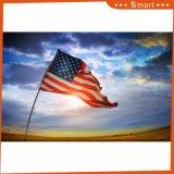 옥외 비행 운동 경기 사용 주문 국기 미국 국기