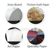 Bolsa de papel de regalo personalizado elegante bolsa de papel Kraft Imprimir