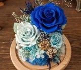 Flor azul preservada de las rosas en vidrio de Kunming con la luz del LED