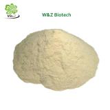 Alta calidad de un 99% de la goma arábiga/ Polvo goma de Acacia Nº CAS 9000-01-5