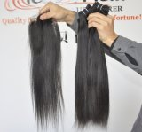 Extensions malaisiennes droites de cheveu des cheveux humains 9A de Vierge non transformée en gros