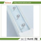 Kesue LED는 야채를 위해 가볍게 또는 꽃 또는 나물 증가한다