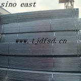Conduttura d'acciaio quadrata galvanizzata ASTM