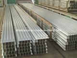 Profils en aluminium/en aluminium d'extrusion pour des profils de Deepfreeze