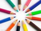 着色された鉛筆(WD-CP-005)