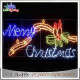 Fröhliche Chiristmas LED Seil-Motiv-Feiertags-Dekoration-Zeichen-Lichter