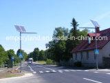 7m 50W a conduit la lumière solaire pour l'éclairage extérieur (DZS-07-50W)