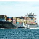 Verschiffen, Versorgungskette, Zollabfertigung und Lager-Services für industrielle Ausrüstungs-Bestandteile