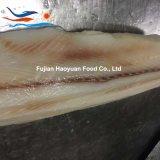よい価格によってフリーズされるシーフードのヨシキリザメの肉付け