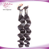 O preço barato 8A afrouxa o cabelo humano do Indian do Virgin de Remy da onda