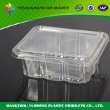 Rectangulaire Deli Food Container avec couvercle