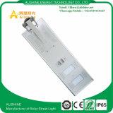 Étanches IP65 40W de l'éclairage solaire de jardin en plein air avec certificat CE