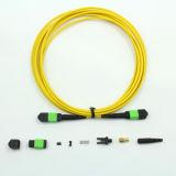 MPO / APC a MPO / APC fibra óptica Patchcord