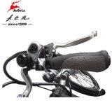 Vélo électrique 700C CE (JSL-033A)