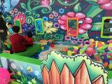 2018年のジャングルの主題の子供の柔らかい屋内運動場装置(HS16102)