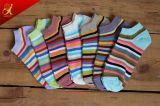 Form-bunte Streifen-Socken der populären kundenspezifischen Frauen