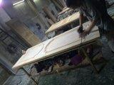 Natur-festes Holz-Tür-Großverkauf-Eintrag-Haustür (XS2-044)