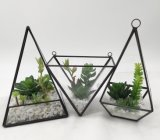 Plantas Potted do Terrarium artificial do frame do metal de Everygreen da folha Succulent