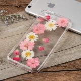 Realer getrockneter gepresster bunter Blumen-Telefon-Kasten für iPhone 7