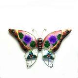 Decoração colorida da parede da flor do vidro manchado da borboleta W. do metal do jardim