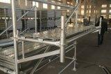 De Gegalvaniseerde Steiger Ringlock van de hete ONDERDOMPELING voor Bouw (SGS)