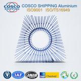 Het Profiel van het aluminium voor Heatsink met het Zilveren Anodiseren en het Machinaal bewerken