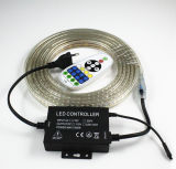 Tira de color doble ajustable de la temperatura de color Cw+Ww 120LEDs