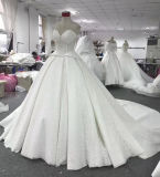 Aoliweiyaのサンプルガウンのカテドラルのトレインのウェディングドレス