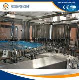 Machine en plastique automatique de fabrication de mise en bouteilles d'eau de bouteille d'animal familier