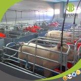 돼지 농장을%s 높은 생존율 새끼를 낳는 크레이트