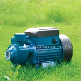 Elestar 상표 Auwzb-125 전기 자동적인 수도 펌프 세트