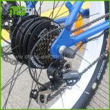 48V 250W Hochgeschwindigkeitselektrisches Fahrrad des hohen Grad-32km/H für Verkauf