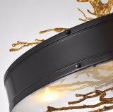 Lampe à lampe suspendue en laiton de série populaire (KA9009)