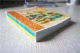 Notizbuch-Drucken des Schule-Zubehör-preiswertes Massenzoll-A4 A5