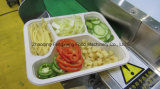 Fs 600 간이 식품 상자 밀봉 기계, 샐러드 밀봉 포장기