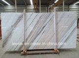 Marbre blanc élevé de Palissandro Classico de ventes pour la construction