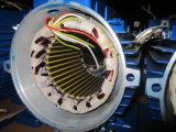 Mej. Series Ie1 Elektrische Motor In drie stadia