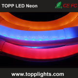 Impermeável Ce Rhos Aprovado LED Luz Neon Rope Neon Lights