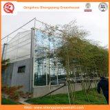 다중 경간 설치를 위한 유리제 녹색 집