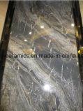 Mattonelle piene del marmo del corpo di disegno caldo