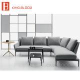 L novo contemporâneo mobília do projeto do sofá da forma para a sala de visitas