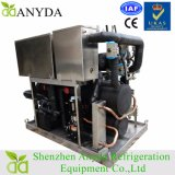Kundenspezifischer Wasser-Kühler der niedrigen Temperatur-25HP mit Kolben-Kompressor