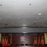 Plafond faux personnalisé par panneau en aluminium avec le bon prix