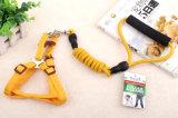 애완 동물 제품 공급 개 편리한 가죽끈 (L003)