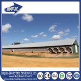 Chambre préfabriquée/préfabriquée Philippines de poulet en acier incurvé moderne commercial de construction de ferme