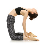 La yoga de la gimnasia de mujeres jadea las polainas de la yoga de la ropa de deportes para la aptitud