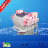 Lipo Effcetive Machine non invasif de réduction de la Cellulite avec diodes importés